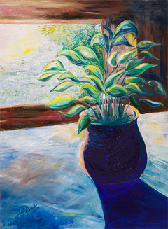 potted plant at dawn